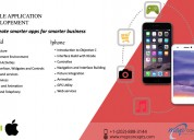 Msp concepts - mobile application development