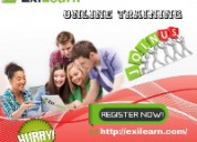 Online training institute | usa |placement