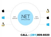 .net application development company