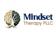 mental health treatment in texas - mindset therapy