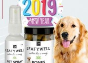 Exciting new year sale on pet product - leafywell