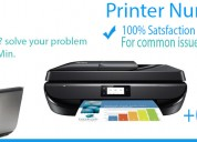 Printer technical support   printer issues