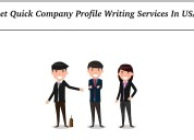 Get quick company profile writing services in usa