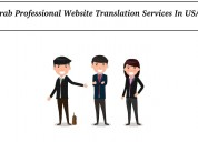 Grab professional website translation services