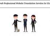 Grab professional website translation services