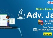 Top advanced java online training institute in usa