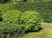 Get lawn care muskegon michigan | preferredlawnand