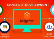 Tailored solutions | magento development company