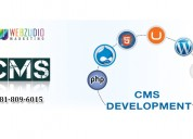 Cms development services houston