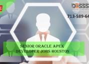 Senior oracle apex developer job vacancy in usa