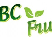 Manufacturer/exporter of fruit pulp - abc fruits