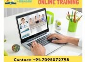 Sap c4 hana training online