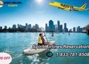 Travel with spirit airlines reservations