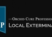 Ocp bed bug exterminator atlanta ga - bed bug remo