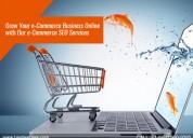 E-commerce seo services - best web solutions & co.