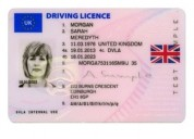 Buy real high quality driver's license online