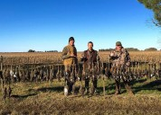 Best dove hunting in argentina