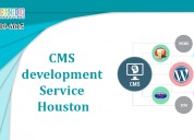 Best cms application development service houston