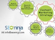 Best seo company in new york - seoninja.com
