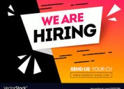 Hiring it & software engineers