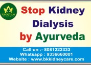 Kidney without dialysis