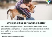 Emotional support letter