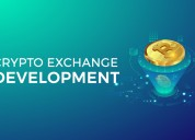 Attain the right strategy for crypto exchange deve