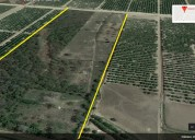 $130 k 11.3 acres available for sale in los fresno