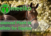 Balanced plant in pellets for equine