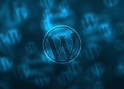 Hire best wordpress developers