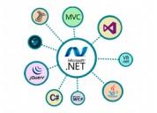 .net development company & services