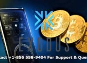Exodus phone number