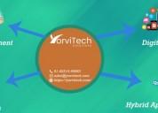 Yorvitech solutions pvt ltd.