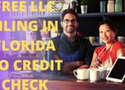 👀 start your own llc in florida for free no credi