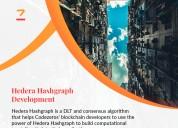 Hedera hashgraph development