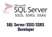 Sql server development training and placement