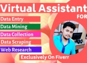 I will be your reliable virtual assistant for data