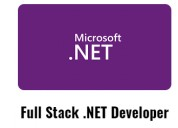 Full stack .net development training and placement