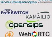 Best voip software solution & services development