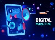 Digital marketing company delhi - digital marketin
