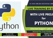Python online live training