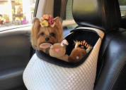 Toitert.com – multifunctional dog car seats