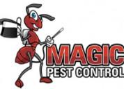 Pest control gilbert, chandler, phoenix, arizona