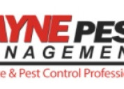 Residential pest termite control san diego