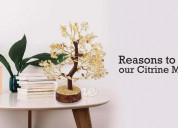 Reasons to purchase our citrine money tree