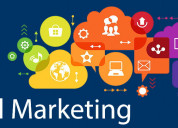 Hire remote digital marketing expert