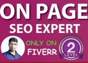 On page seo in fiverr