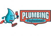 Plumbing professionals (hoover)