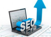 Palmettosoft outranks your competitors with seo