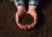Get the quality soil testing services - aaa group